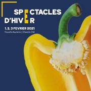 Spectacles d'Hiver 2021